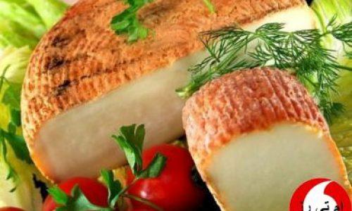 فروش پنیر ترکیه / ارسال به ایران