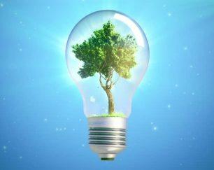 فروش لامپ کم مصرف در ام تی رز