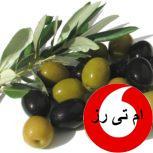 واردات روغن زیتون سوریه