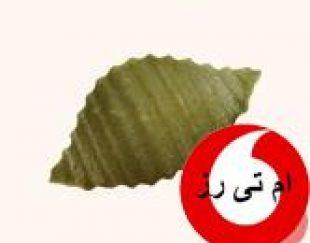 فروش ماکارونی صدفی سبزیجات لاتامارکو ترکیه