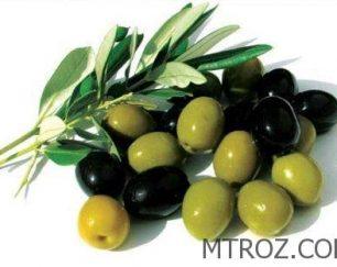 واردات زیتون سبز  بدون واسطه