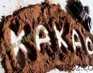 با خوردن شکلات تلخ از این بیماری ها پیشگیری کنید سایا تجارت المان ارس