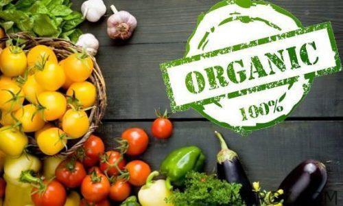 بزرگترین فروشگاه محصولات غذایی ارگانیک در تبریز