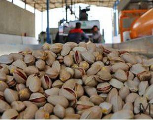 انواع پسته ایران و صادرات آن