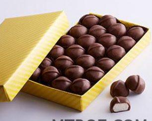 فروش انواع پودر کاکائو latamarko