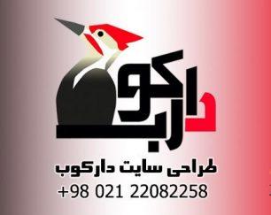 طراحی سایت ارزان برای ایرانیان ترکیه