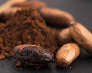واردات و صادرات پودر کاکائو لاتامارکو