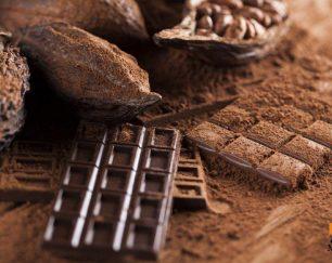 Natural & Alkalized cocoa powder latamarko