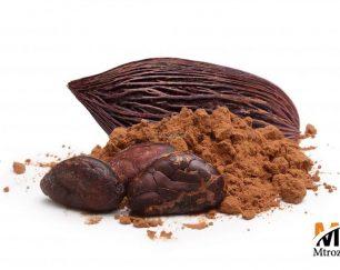 واردات مستقیم پودر کاکائو نچرال از ترکیه