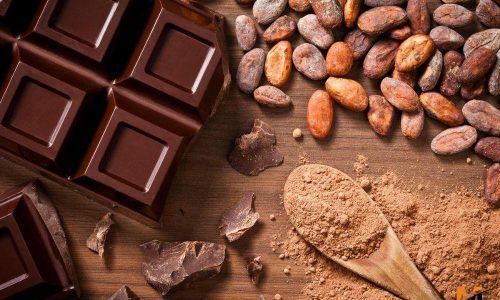 واردات پودر کاکائو لاتامارکو latamarko از ترکیه