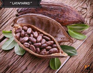 واردات و اعطای نمایندگی فروش مواد اولیه غذایی شکلات