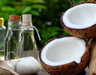 فروش عمده پودر نارگیل چرب و خشک بهترین کیفیت و قیمت