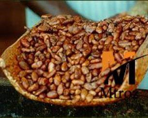 واردات مستقیم پودر کاکائو نچرال و الکالایز محصول لاتامارکو