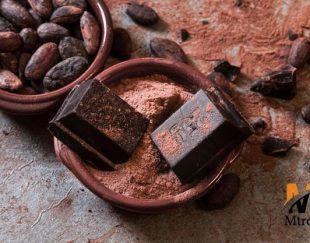 فروش دانه کاکائو عمده