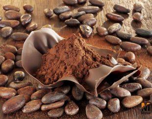 پودر کاکائو فروشی latamarko لاتامارکو