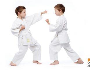اموزش کاراته و دفاع شخصی در استانبول