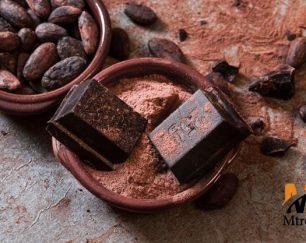 بهترین قیمت پودر کاکائو