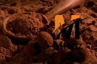cocoa powder latamarko (24)