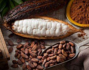 قیمت پودر کاکائو کیلویی لاتامارکو