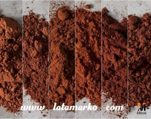 واردات و فروش پودر کاکائو بنسدروپ فرانسه