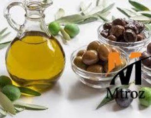 واردات مستقیم زیتون و روغن زیتون با بهترین کیفیت از ترکیه