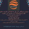استخدام شرکت ELYOL دفتر مجیدیه کوی