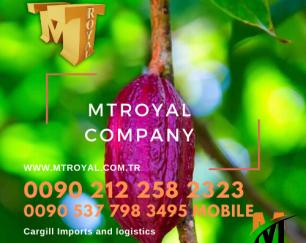 واردات مواد اولیه صنعت غذایی از ترکیه