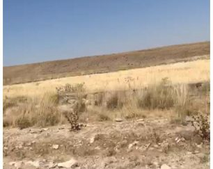 فروش زمین باغی به متراژ ۱۰۰۵ مترسه نبش وپی ریزی دیوارها