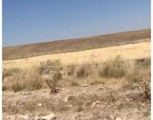 فروش زمین باغی به متراژ 1005 مترسه نبش وپی ریزی دیوارها