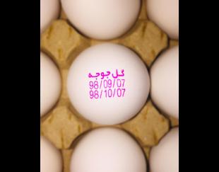 چاپ تاریخ روی تخم مرغ – جت پرینتر تخم مرغ(پرینتر-صنعتی-تخم مرغی)