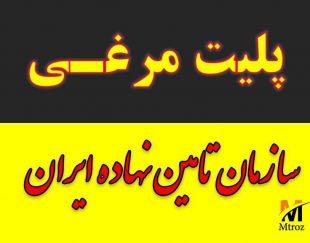 تولید کود مرغی و پلت مرغی در مشهد