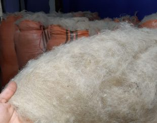 پشم خالص گوسفند