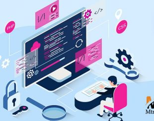 طراحی حرفه ای سایت و SEO