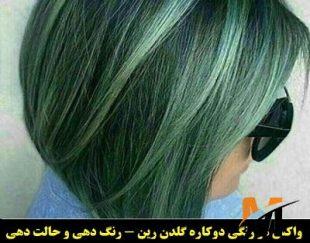 فروش واکس موی رنگ موقت رین رنگ مو سبزکم رنگ