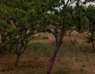 باغ میوه 4000متر