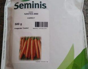 توزیع و فروش بذر نانتس